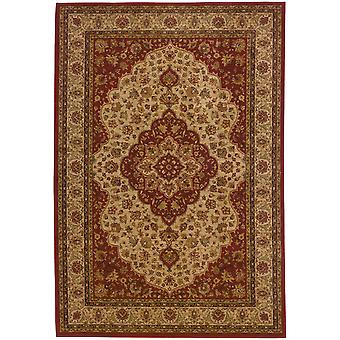 Allure 011d1 red/gold oriental area rug (6'7