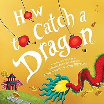 How to Catch a Dragon by Adam Wallace