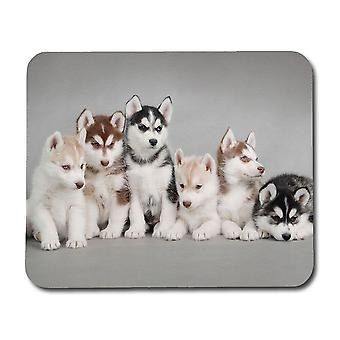 Siberian Husky Puppies Mouse Pad