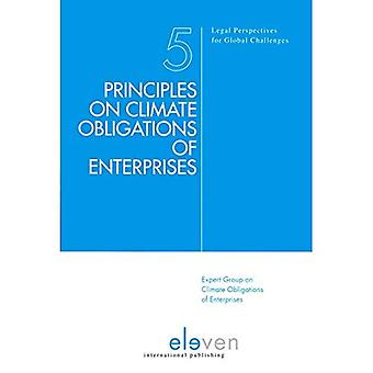 Principles on Climate Obligations of Enterprises (Legal Perspectives on Global Challenges)