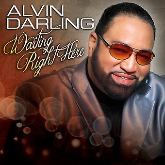 Alvin Darling - Waiting Right Here [CD] USA import