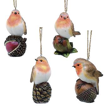 Robin on Nuts and Cones - Hanging Ornament - 10cm