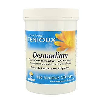 Desmodium 480 capsules
