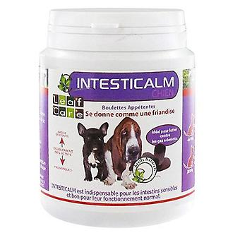 Leaf Care Intesticalm Dog (Dogs , Supplements)