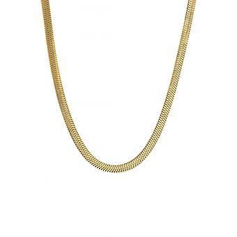 Clyda Women's Jewelry Necklace BCLCO0019SD - Dor Steel
