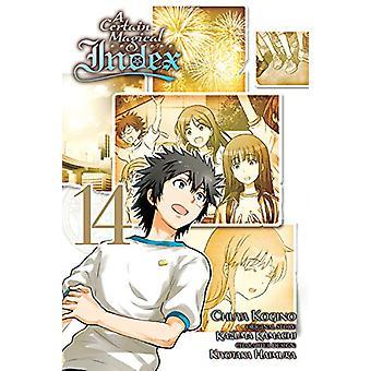 A Certain Magical Index, Vol. 14 (Manga) by Kazuma Kamachi (Paperback, 2018)