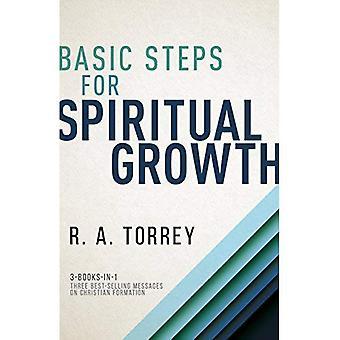 Grundläggande steg för andlig tillväxt
