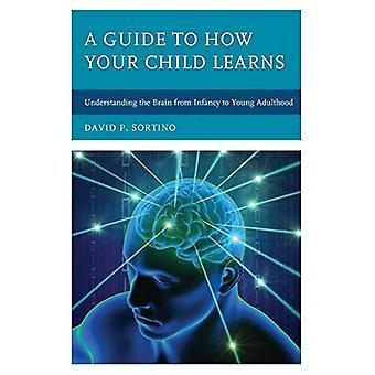 Een gids voor hoe uw kind leert: inzicht in de hersenen van kleutertijd naar jonge volwassenheid (hersenen Smart)