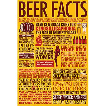 Poster - Beer - Facts Wall Art Licensed Gifts Toys 241215