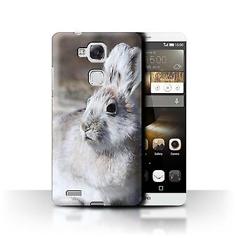 STUFF4 Case/Cover for Huawei Ascend Mate7/White Arctic Hare/Arctic Animals