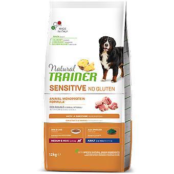 Trainer Fitness 3 Adult Medium Maxi Pork (Dogs , Dog Food , Dry Food)