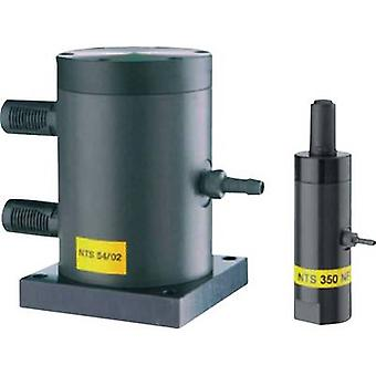 Netter Vibration Linear vibrator 01912600 NTS 120 HF Nominal frequency (at 6 bar): 8960 rpm 1/8 1 pc(s)