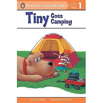 Liten går Camping (Lunde lett-å-lese: nivå 1)
