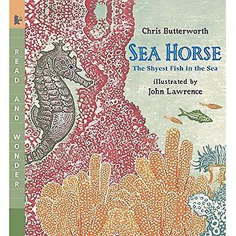Cheval de mer: Le poisson entremelent dans la mer (lire et me demande)
