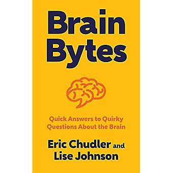 Hjärnan byte: Snabba svar på udda frågor om hjärnan