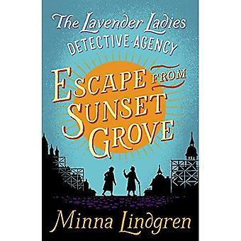 Escape from Sunset Grove (Lavender Ladies Detective Agency)