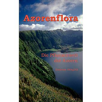 Azorenflora by Stieglitz & Andreas