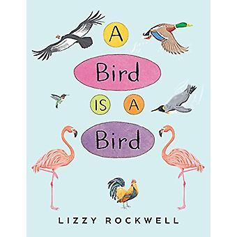 A Bird Is a Bird by Lizzy Rockwell - 9780823440122 Book