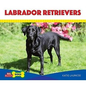 Labrador Retrievers by Katie Lajiness - 9781532112119 Book