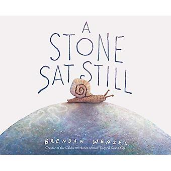 A Stone Sat Still by Brendan Wenzel - 9781452173184 Book