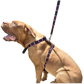 Carlos diaz genuine leather waxed embroidered polo dog matching easy control no pull harness and lead set cdsh2