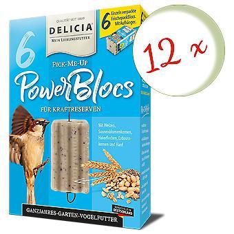 Sparset: 12 x FRUNOL DELICIA® Delicia® Pick-Me-Up Powerblocs, 6 Stück