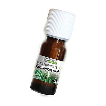 Euca Radie essential oil 10 ml of essential oil