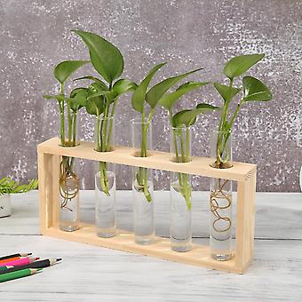 Nordic style eco friendly glass and wood vase planter terrarium