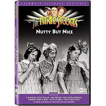 Três patetas - importação EUA Nutty mas agradável [DVD]
