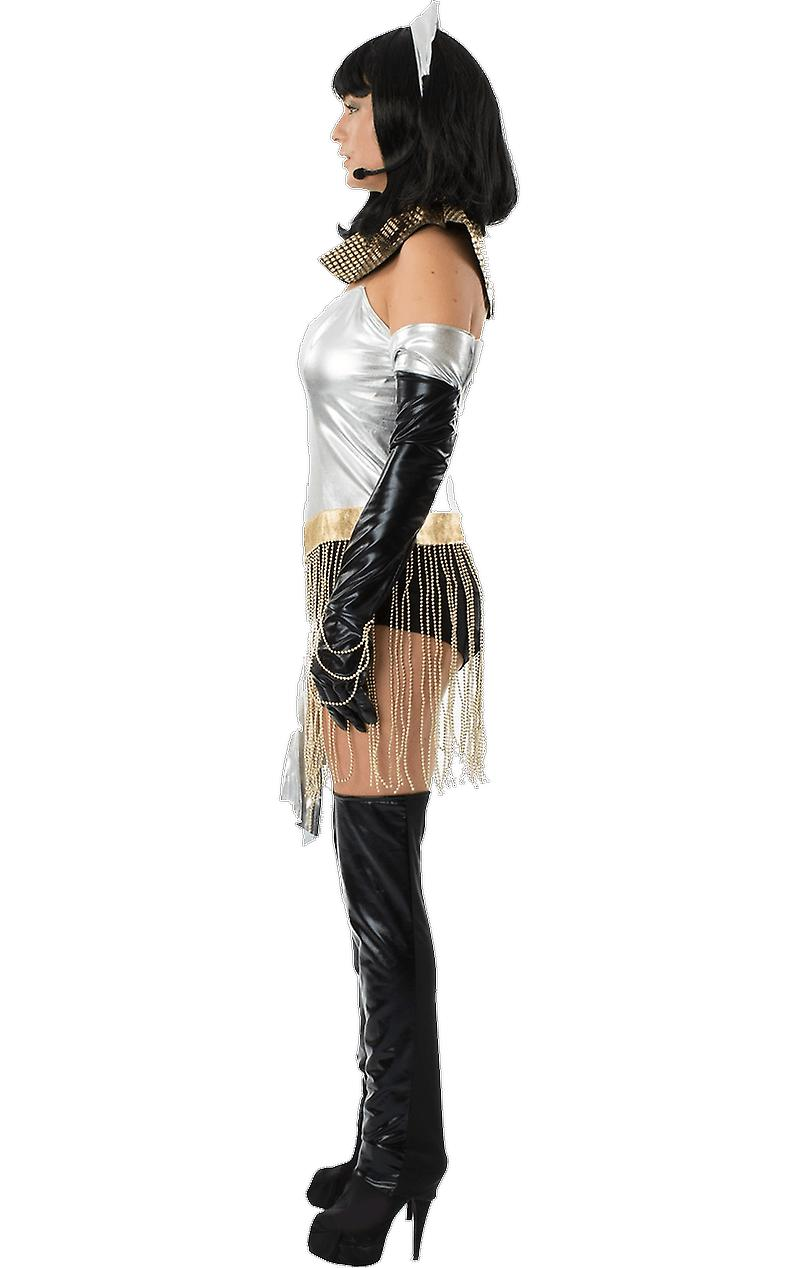 Womens Whitney Houston Bodyguard Queen of the Night Music Fancy Dress Costume