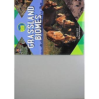 Grasland Biome (Erde natürliche Biome)
