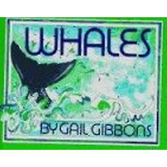 Whales by Gail Gibbons - 9780823410309 Book