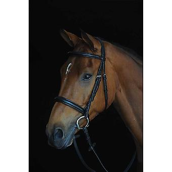 Collegiate Comfort Crown Padded Raised Cavesson Bridle - Black