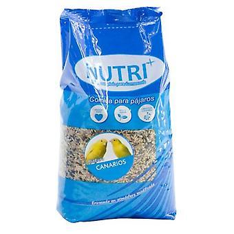Nutriplus Nutriplus Mixture Canary 1Lt. (Birds , Bird Food)