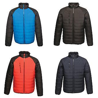 Regatta professionelle Mens glazialen Warmloft Thermal Jacket