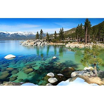 Muurschildering Lake Tahoe