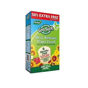 Westland Gro-Sure 6 Month Plant Food 1.1kg + 50%