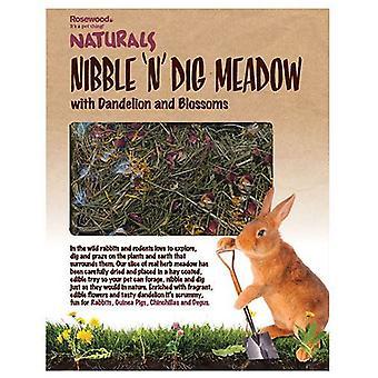 Naturals τσίμπημα ' n ' σκάψιμο λιβάδι με πικραλίδα και άνθη για μικρά ζώα
