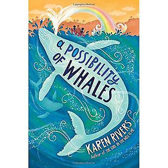 De mogelijkheid bestaat dat walvissen