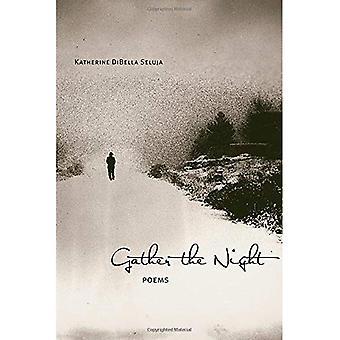 Sammeln Sie die Nacht: Gedichte (Mary Burritt Christiansen Poesie Serie)