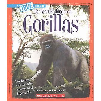 Gorillas by Katie Marsico