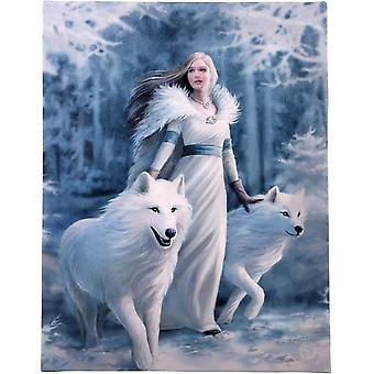 Anne Stokes Winter Guardian Canvas