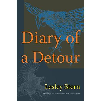 Diary of a Detour by Stern & Lesley
