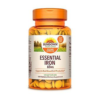 Sundown Naturals Iron, 65 mg, 12 X 120 Tabs