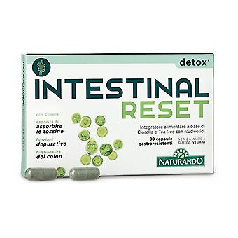 Intestinal Reset 30 capsules