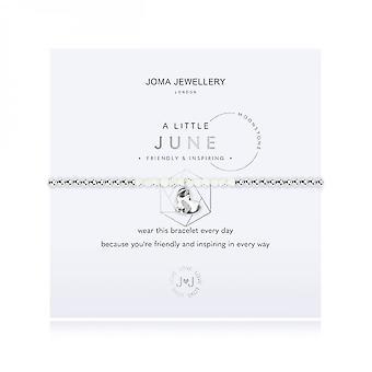 Joma Sieraden Een beetje geboortesteen juni Moonstone Zilver 17,5 cm stretch armband 3465
