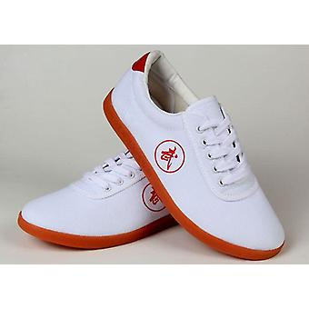 Summer/ Spring- Canvas Training, Martial Arts, Kung Fu Shoes