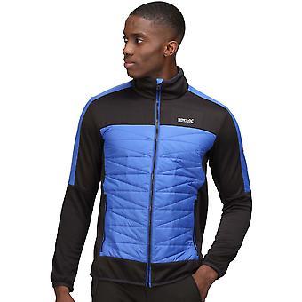 Regatta Herre Clumber Ii Hybrid holdbar isoleret jakke