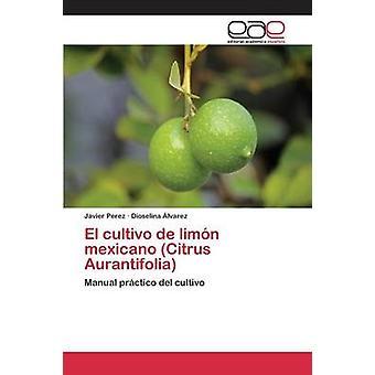 El cultivo de limn mexicano Citrus Aurantifolia por Perez Javier