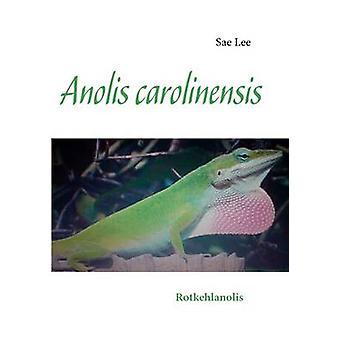 Anolis carolinensis di Lee & Sae